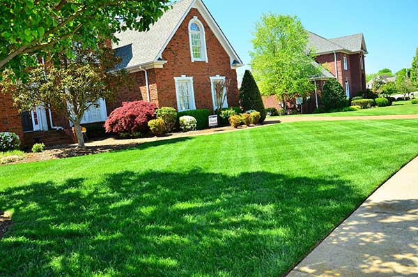 Booneville Missouri Mowing Lawn Care